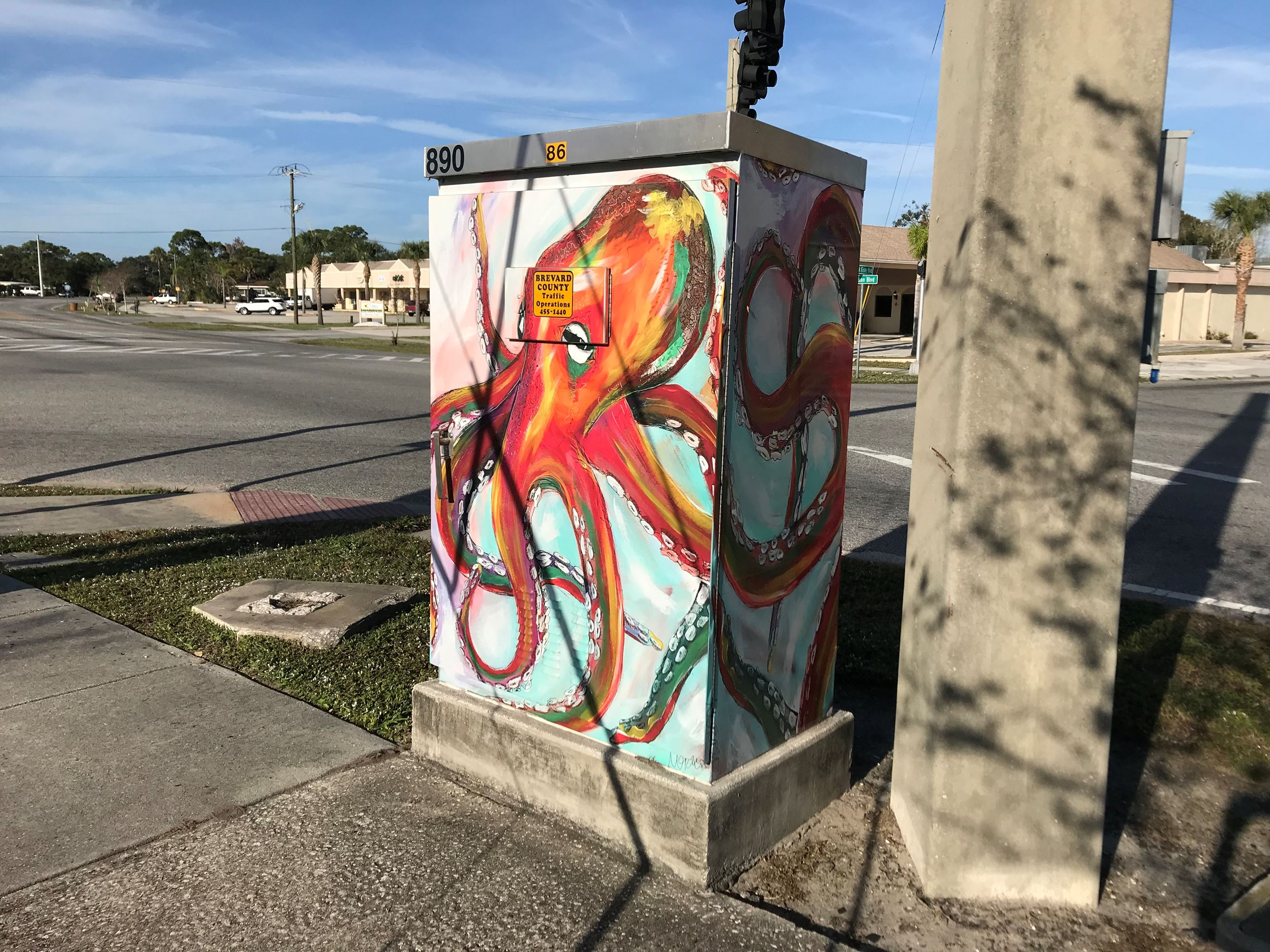 Photo of Colors of the Sea Artwork on Traffic Box at Dixon Blvd. and Fiske Blvd.