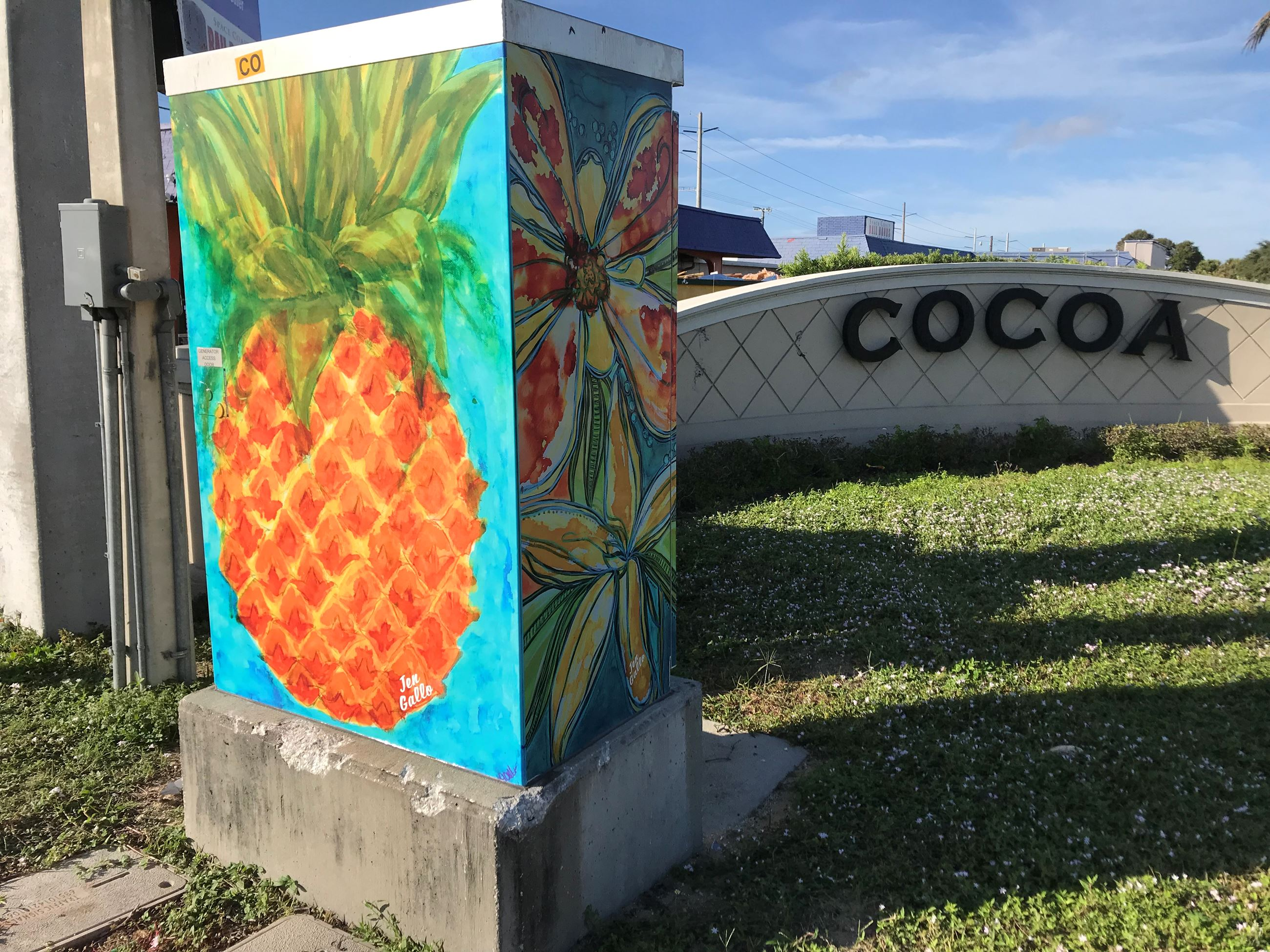 Photo of Pineapple Artwork on Traffic Box at SR520 and US1